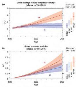 AR5 - Temperature & Sea Level projections
