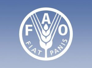 FAO_logo_01