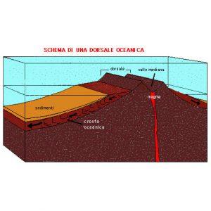 Schema di una dorsale oceanica