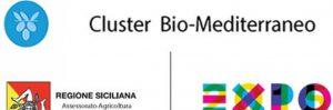 cluster_bio-med