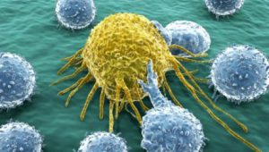 immunoterapia_oncologica