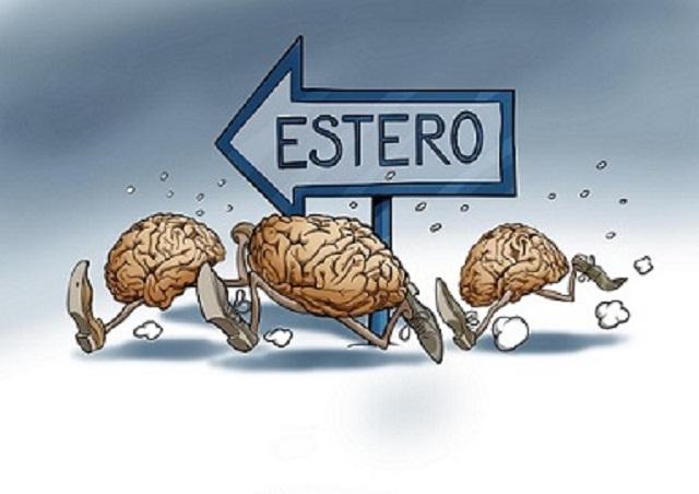 Risultati immagini per cervelli in fuga