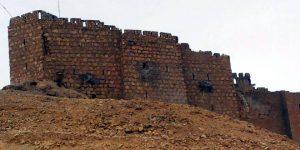 Palmyra-Castle