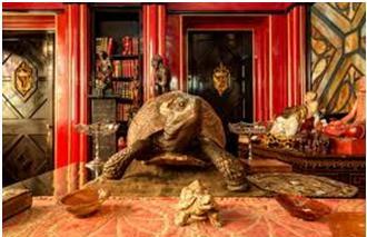 La casa museo di gabriele d annunzio il vittoriale degli for Bagno d annunzio