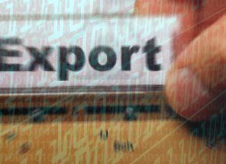 Istat dati export