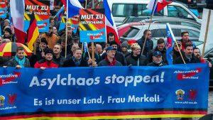Afd Germania elezioni sovranisti