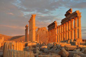 Palmira libera
