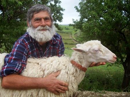 pastori pecore donate terremotati