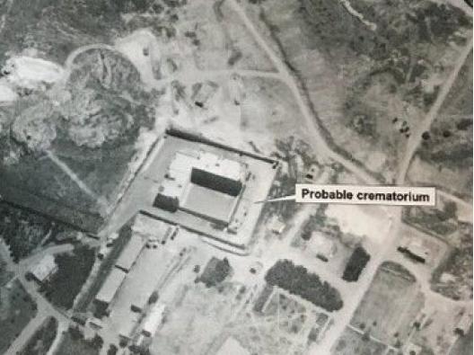 attaco chimico bufale fake news siria forni crematori