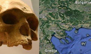 origine uomo Europa out of Africa
