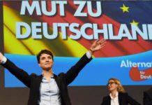 elezioni germania exit poll afd