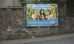 afd manifesto propaganda