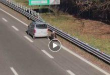 autostrada varese