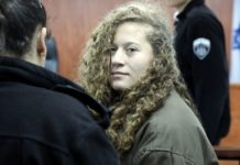 ahed tamimi processo