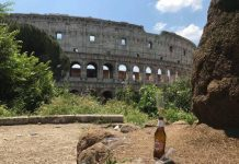 Roma città più sporca 5 stelle