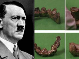 hitler vegetariano analisi denti