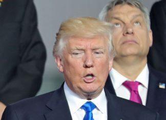 Trump Summit Nato