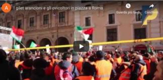 la manifestazione dei gilet arancioni a Roma