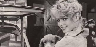 brigitte bardot con un cane in foto d'epoca