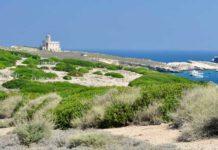 isole tremiti immigrati sbarcati