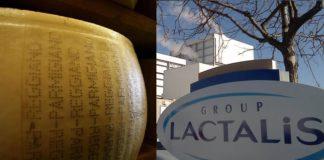 parmigiano lactalis