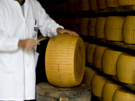 parmigiano produzione