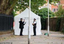 Londra, nuovo weekend di sangue: 60 omicidi solo nel 2019