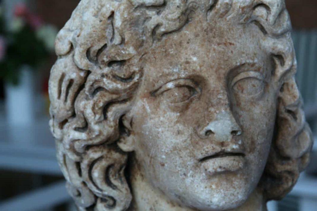 testa di marmo