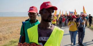 braccianti immigrati a Foggia
