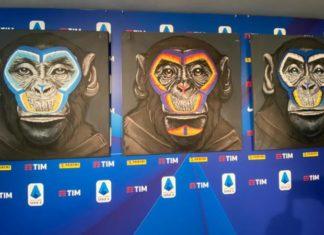 scimmie contro il razzismo