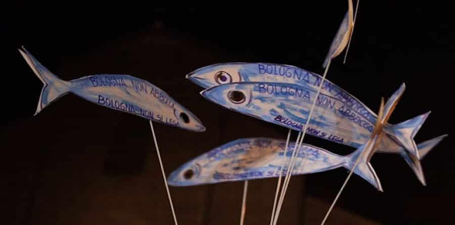 sardine, movimento