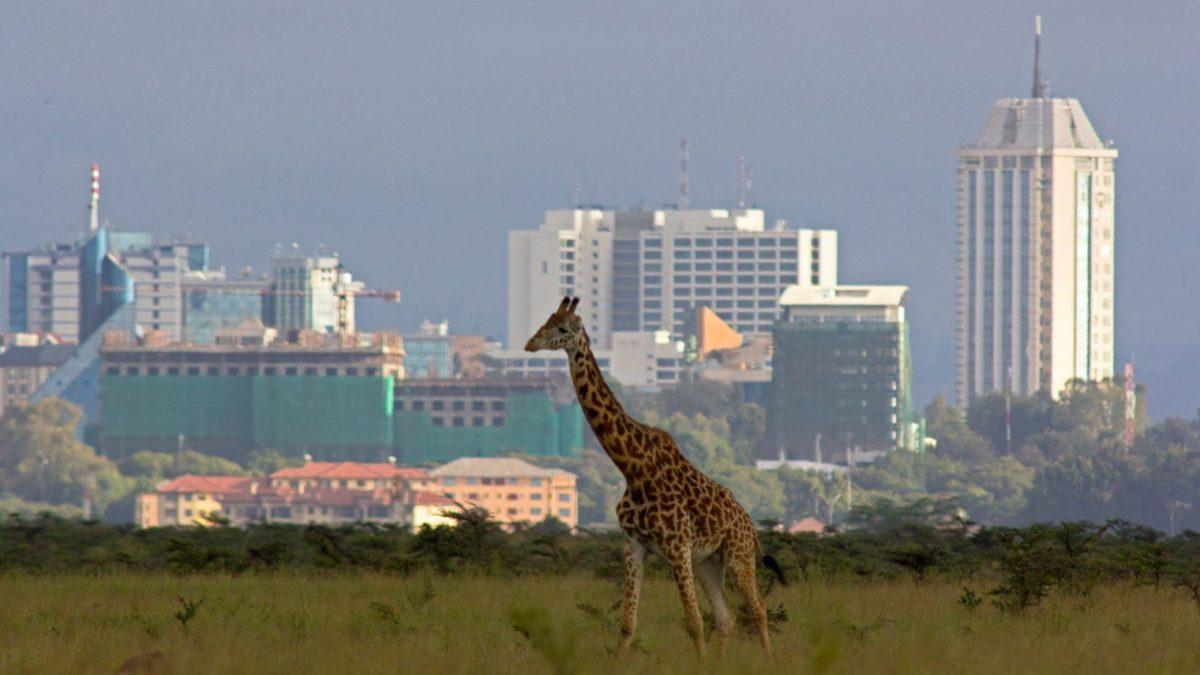 Kenya, Silicon Savannah
