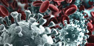 coronavirus creato in laboratorio