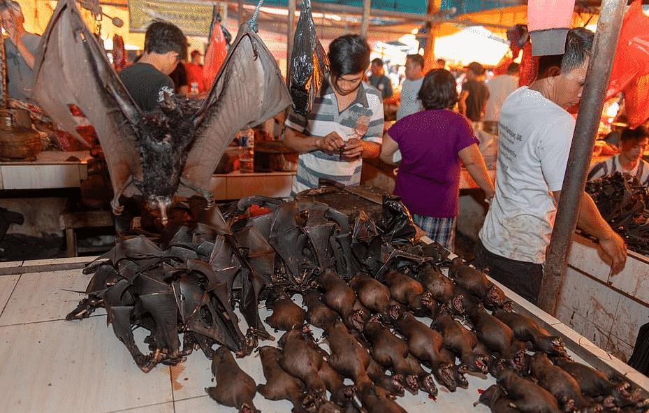 cina mercati pipistrelli