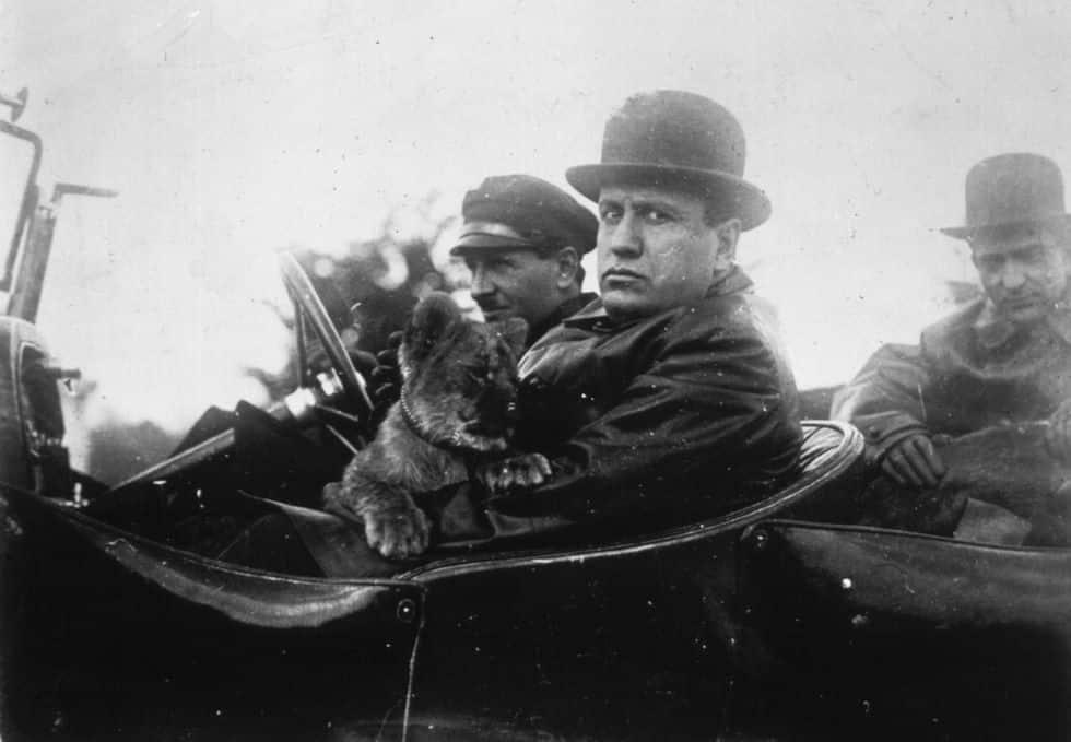 Mussolini, guerra