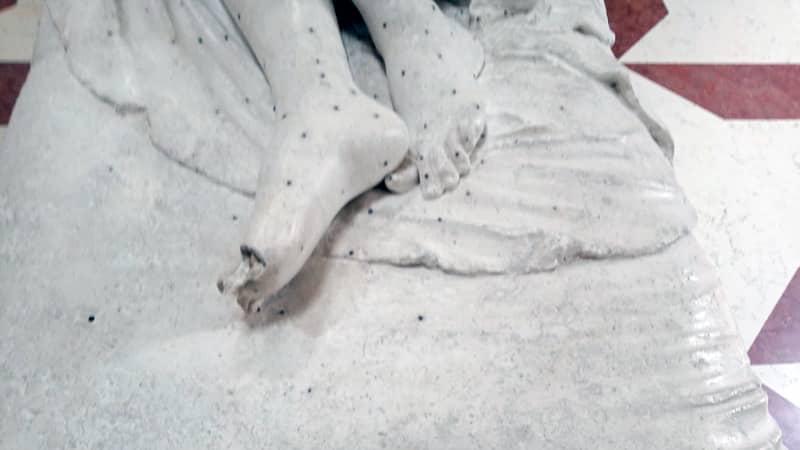 Danno statua Canova