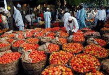 agroalimentare nigeria