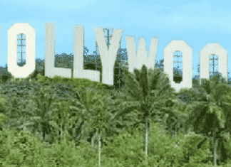 Nollywood, Nigeria