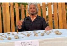 Beppe Grillo, ebay