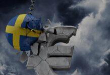 Svezia, euro