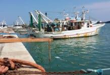 Pescatori, Libia