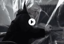 spot vaccino tornatore