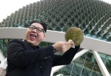Imitatore Kim Jong-un arrestato