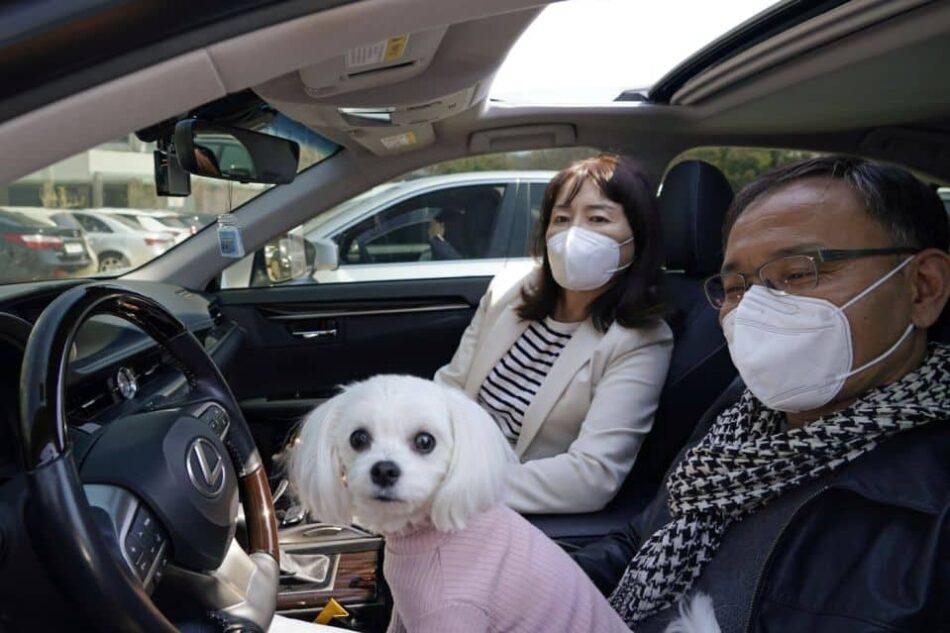 Corea del Sud, animali
