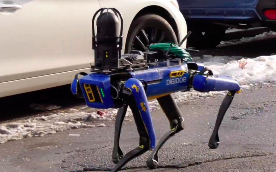 cani robot