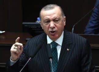 Erdogan, Draghi