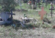 Cimiteri Roma, Ama