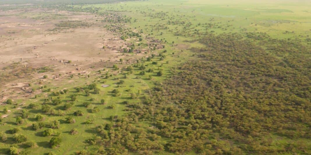 muro verde desertificazione africa