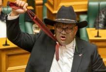 deputato maori