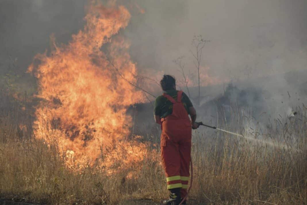 incendi calabria sicilia